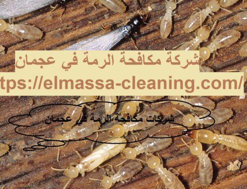 شركة مكافحة الرمة في عجمان |0547309049| ابادة فورية